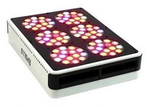 Apollo LED Grow Innovations 6
