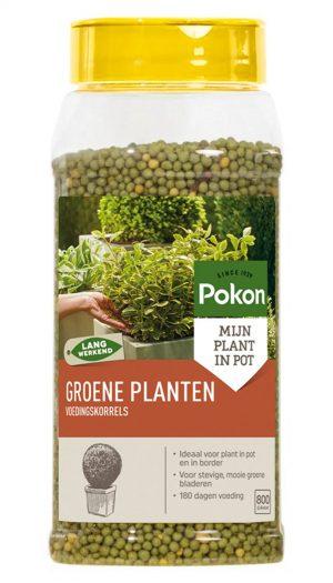 Pokon Groene plant korrels strooibus