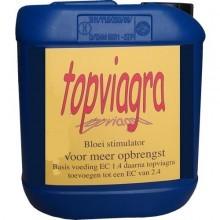 Top viagra  10 Ltr